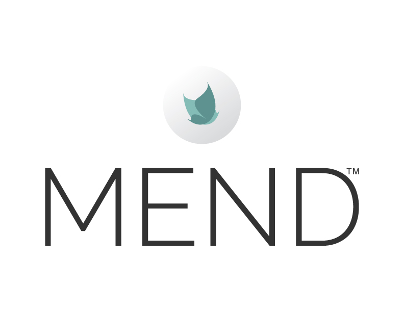 Professional Investors & Leading Surgeons Invest in Life Sciences Startup MEND